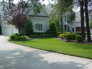Residential Services: Landscaping